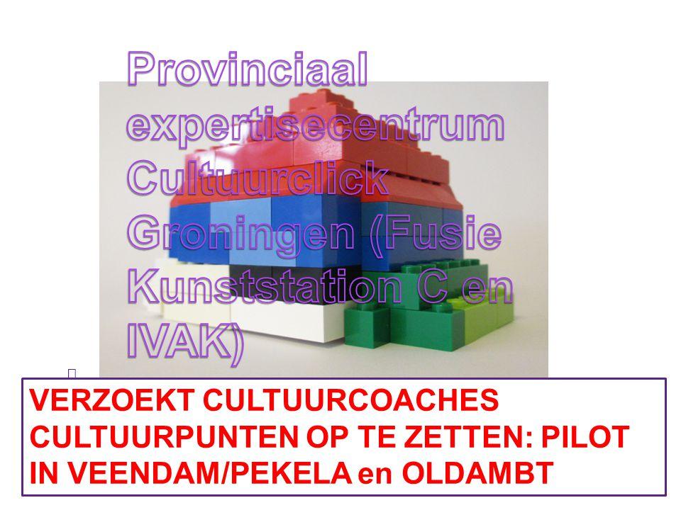 Provinciaal expertisecentrum Cultuurclick Groningen (Fusie Kunststation C en IVAK)