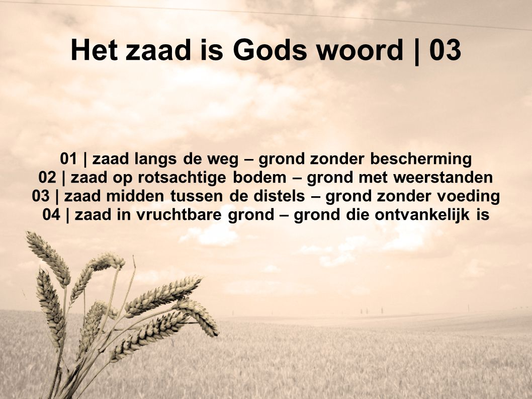 Het zaad is Gods woord | 03 01 | zaad langs de weg – grond zonder bescherming. 02 | zaad op rotsachtige bodem – grond met weerstanden.