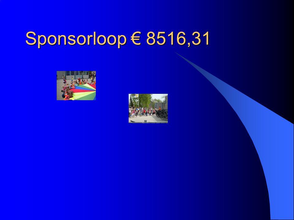Sponsorloop € 8516,31