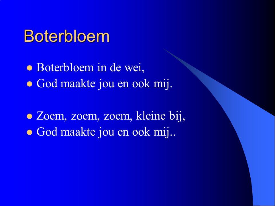 Boterbloem Boterbloem in de wei, God maakte jou en ook mij.