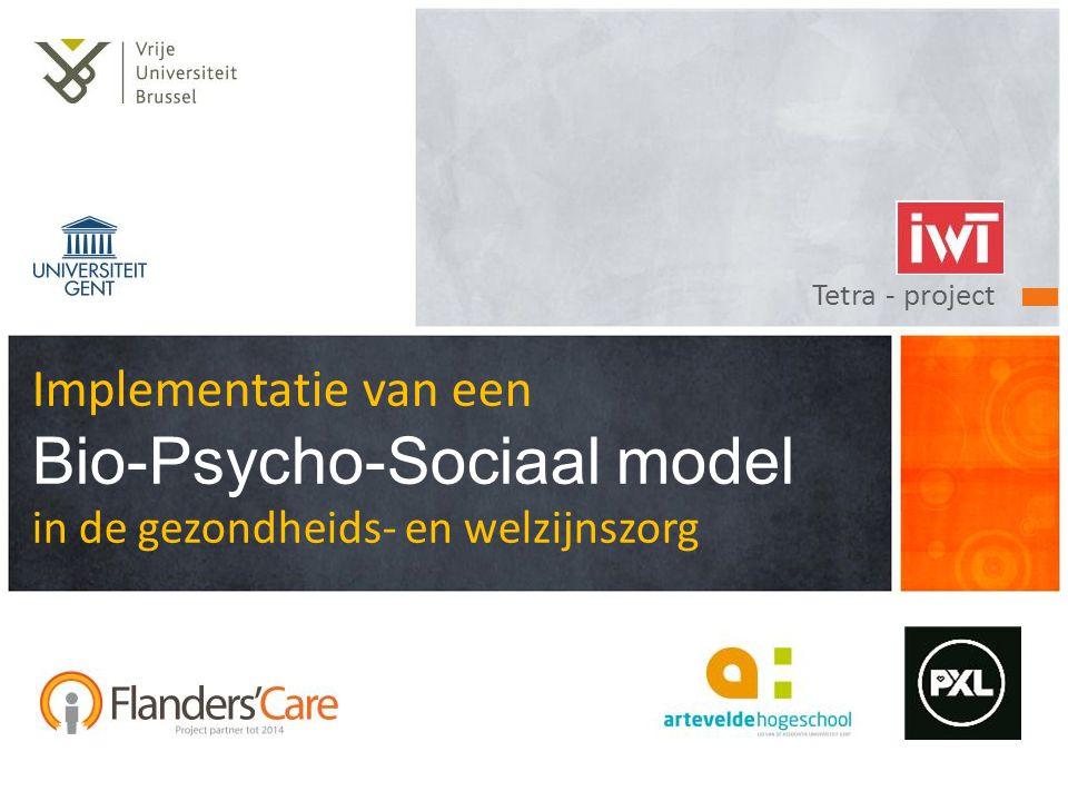 Tetra - project Implementatie van een Bio-Psycho-Sociaal model in de gezondheids- en welzijnszorg