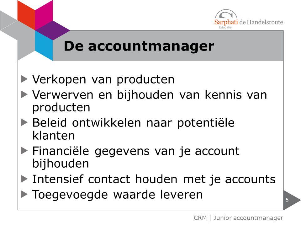 De accountmanager Verkopen van producten