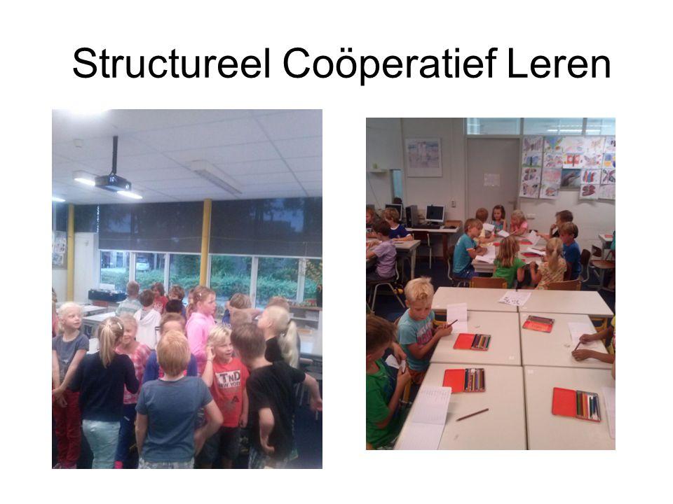 Structureel Coöperatief Leren