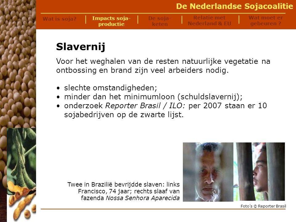 Impacts soja- productie Relatie met Nederland & EU