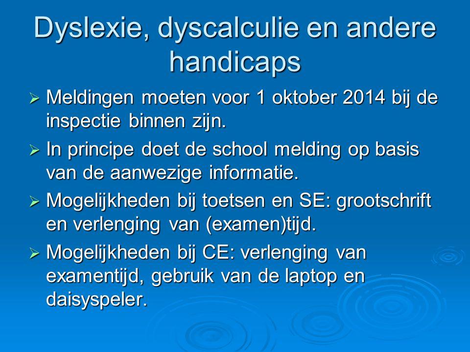 Dyslexie, dyscalculie en andere handicaps