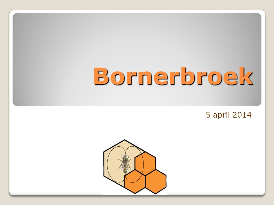 Bornerbroek 5 april 2014