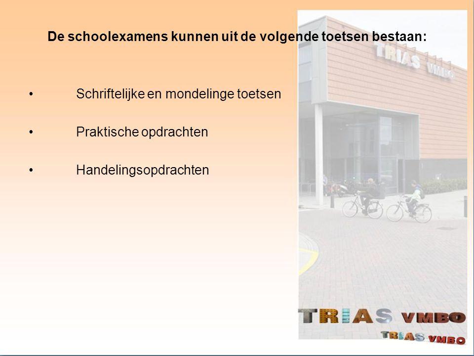 De schoolexamens kunnen uit de volgende toetsen bestaan: