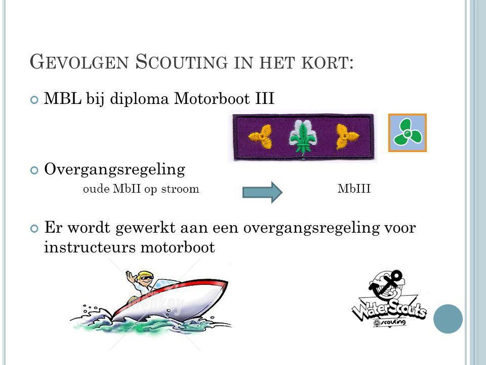 Gevolgen Scouting in het kort:
