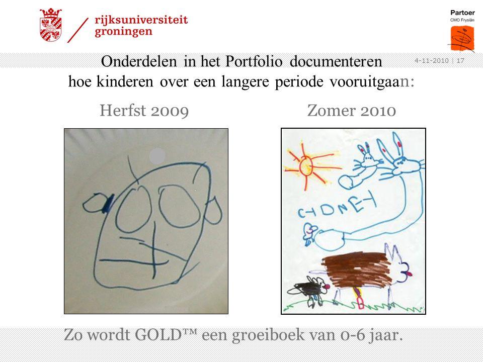 Onderdelen in het Portfolio documenteren