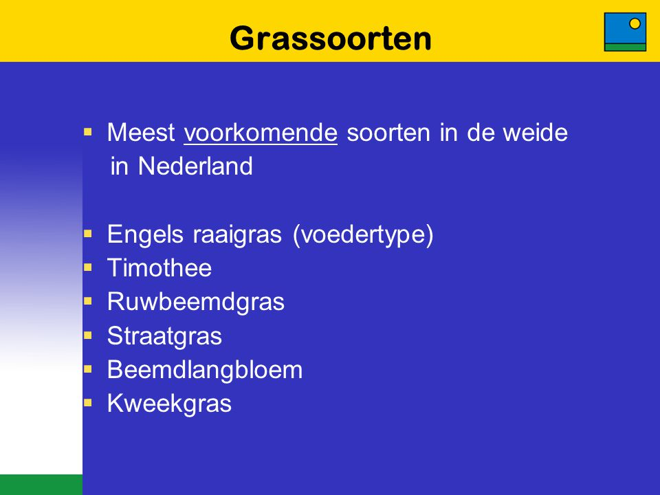 Grassoorten Meest voorkomende soorten in de weide in Nederland