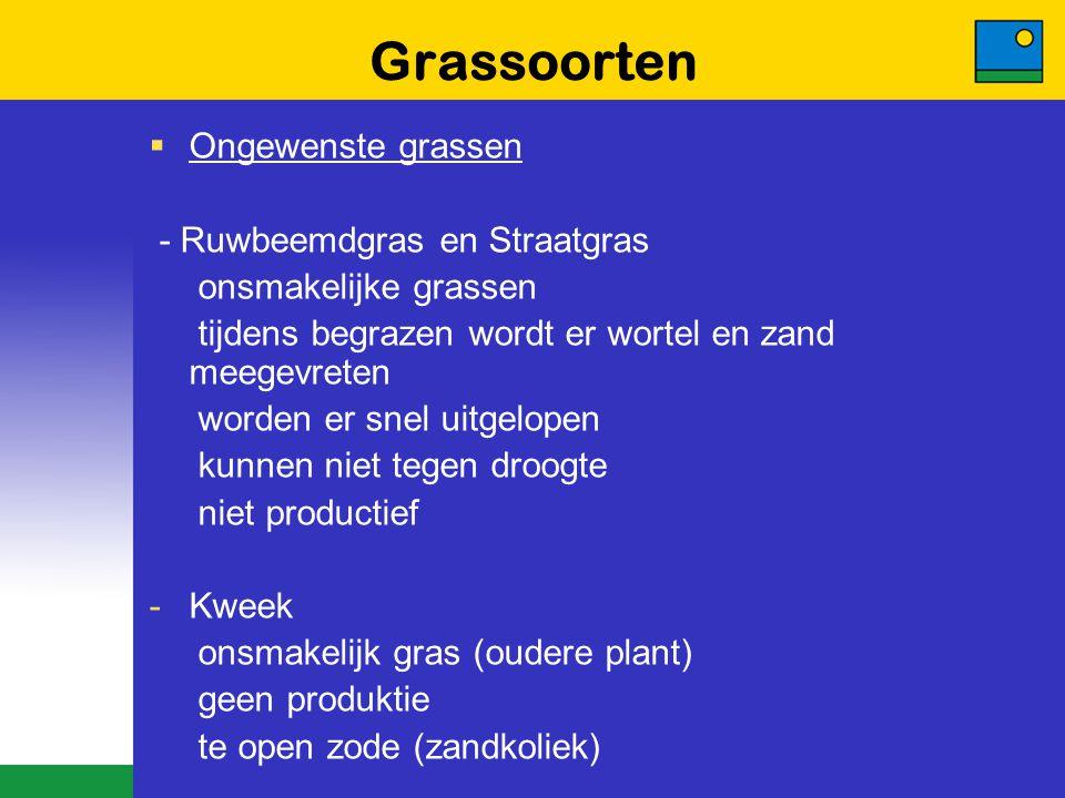 Grassoorten Ongewenste grassen - Ruwbeemdgras en Straatgras