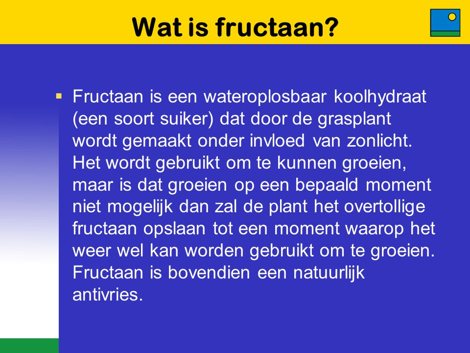 Wat is fructaan
