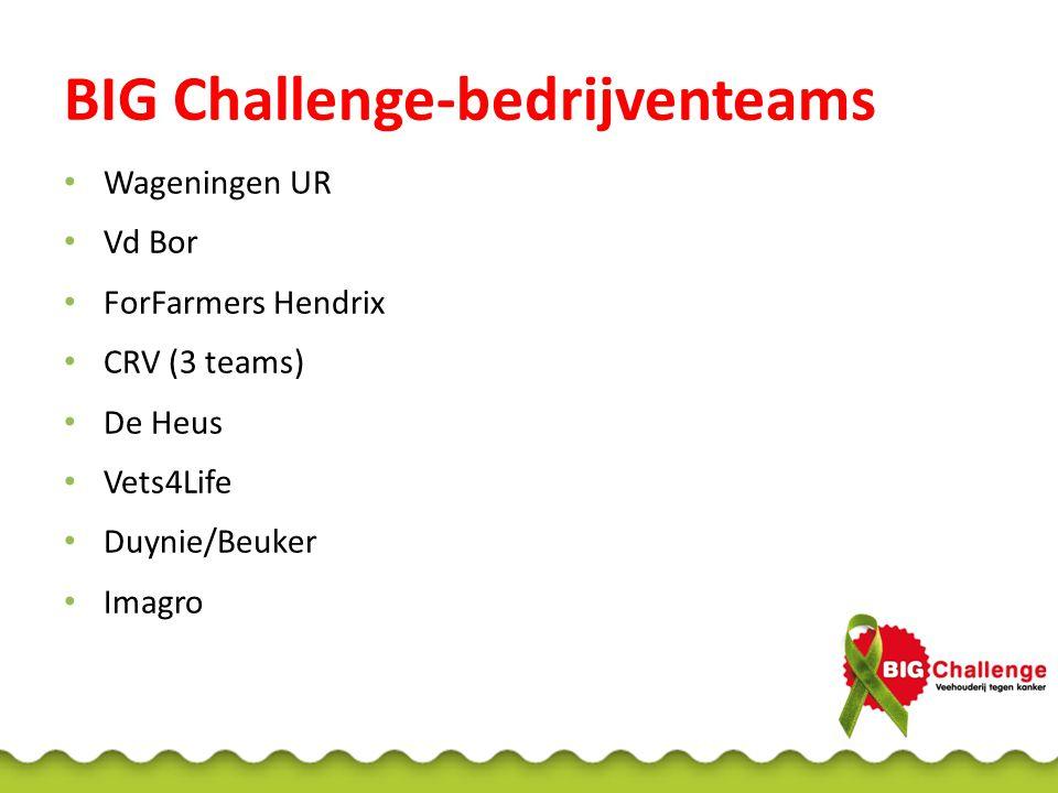 BIG Challenge-bedrijventeams