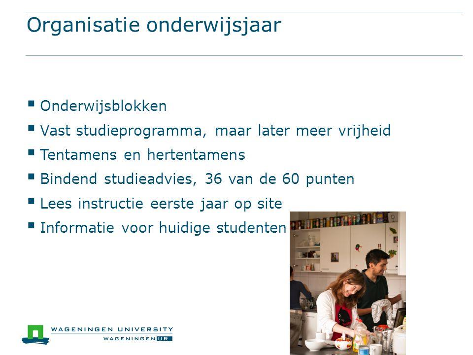 Organisatie onderwijsjaar