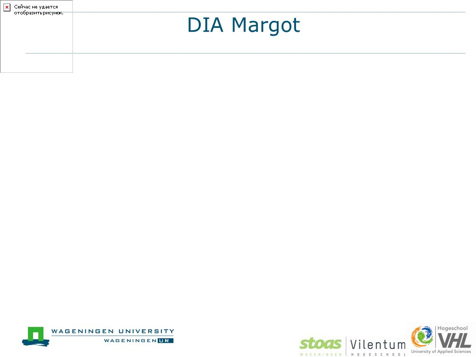 DIA Margot