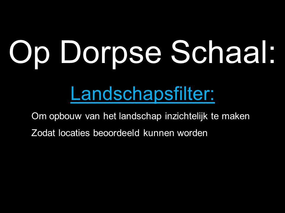 Op Dorpse Schaal: Landschapsfilter:
