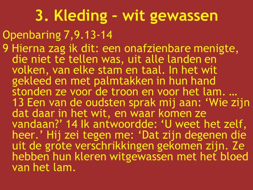 3. Kleding – wit gewassen Openbaring 7,9.13-14
