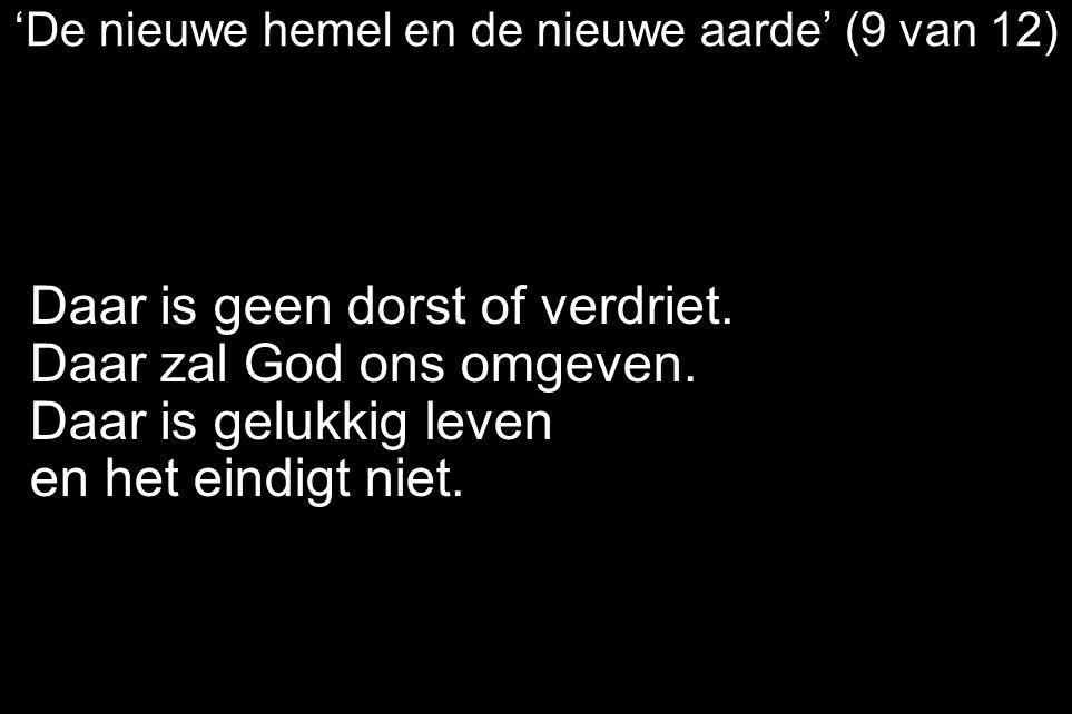 'De nieuwe hemel en de nieuwe aarde' (9 van 12)