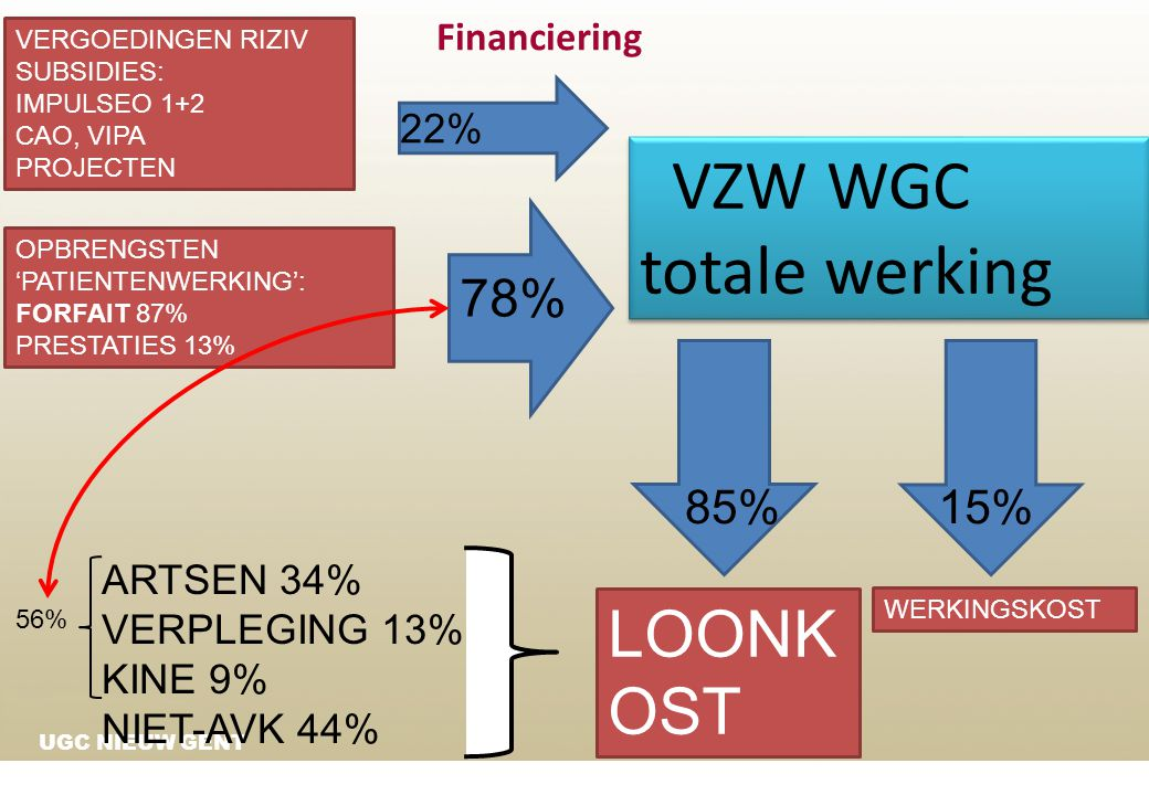 VZW WGC totale werking LOONKOST 78% 85% 15% Financiering 22%