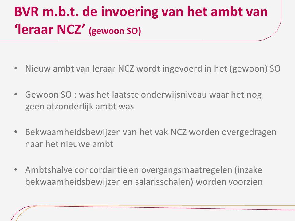 BVR m.b.t. de invoering van het ambt van 'leraar NCZ' (gewoon SO)