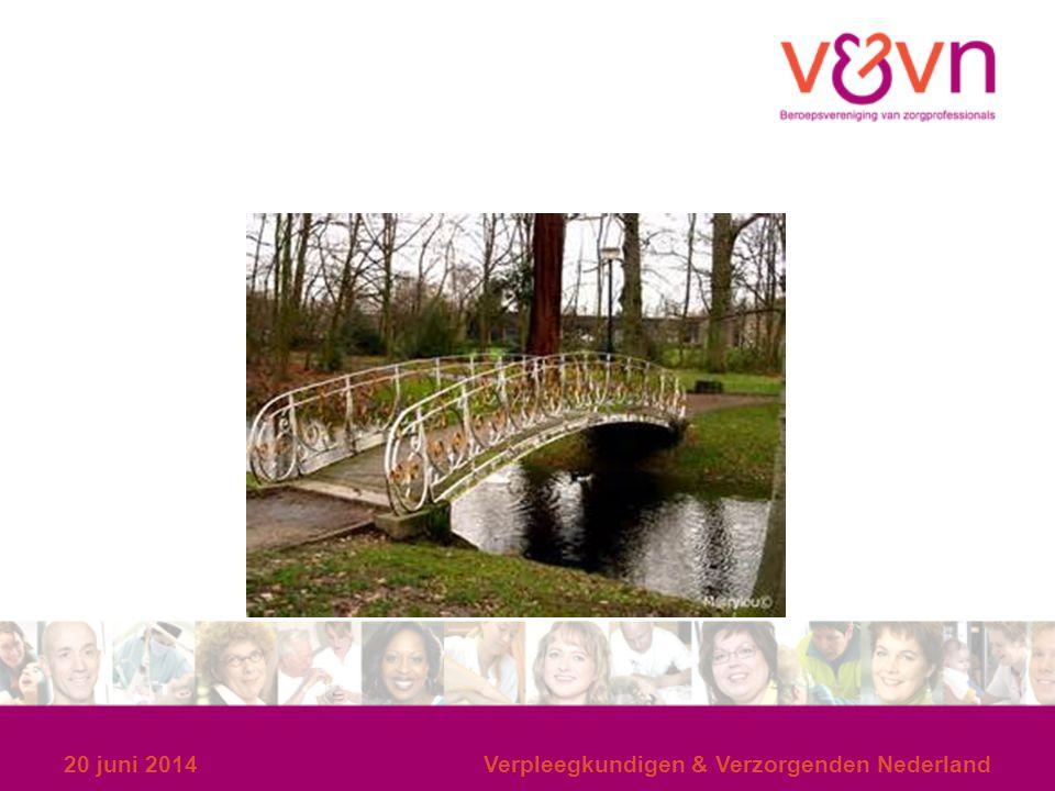 20 juni 2014 Verpleegkundigen & Verzorgenden Nederland