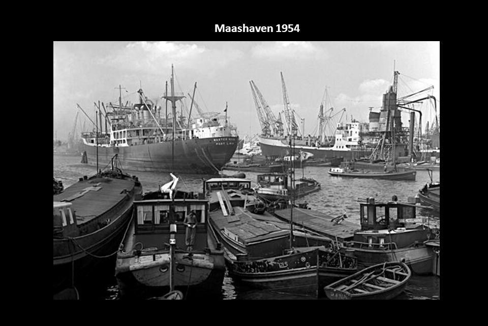Maashaven 1954