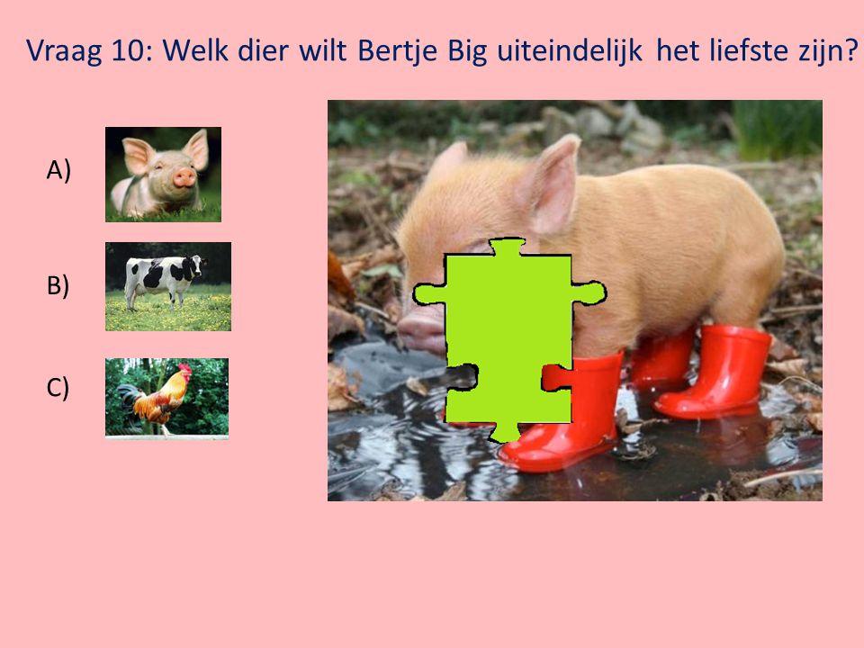 Vraag 10: Welk dier wilt Bertje Big uiteindelijk het liefste zijn