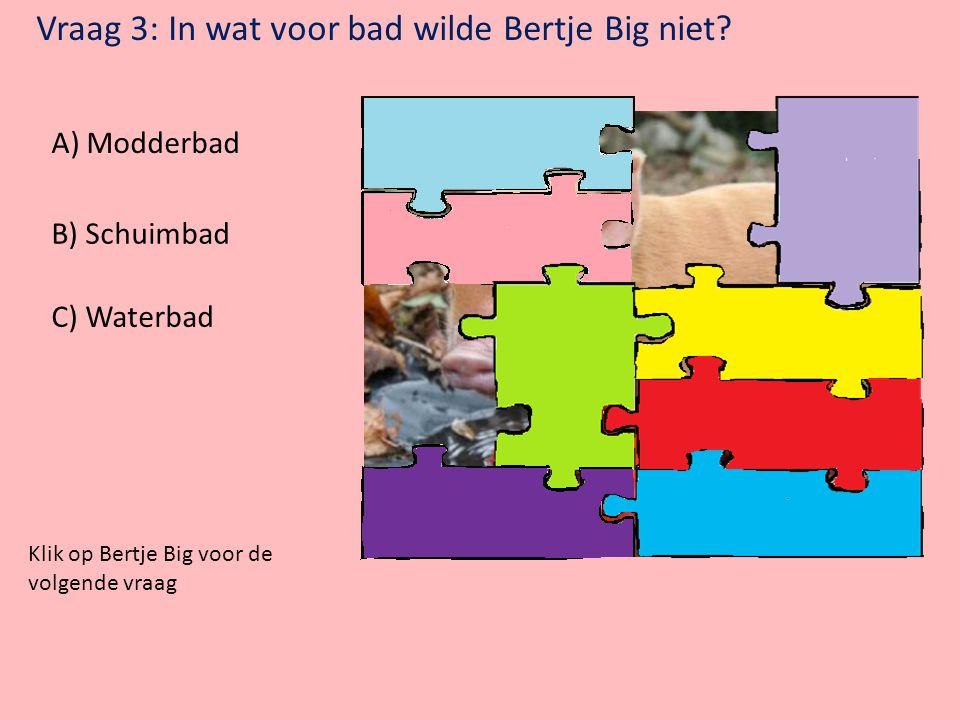 Vraag 3: In wat voor bad wilde Bertje Big niet