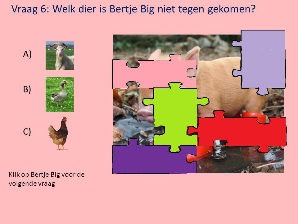 Vraag 6: Welk dier is Bertje Big niet tegen gekomen
