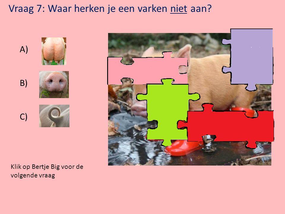 Vraag 7: Waar herken je een varken niet aan