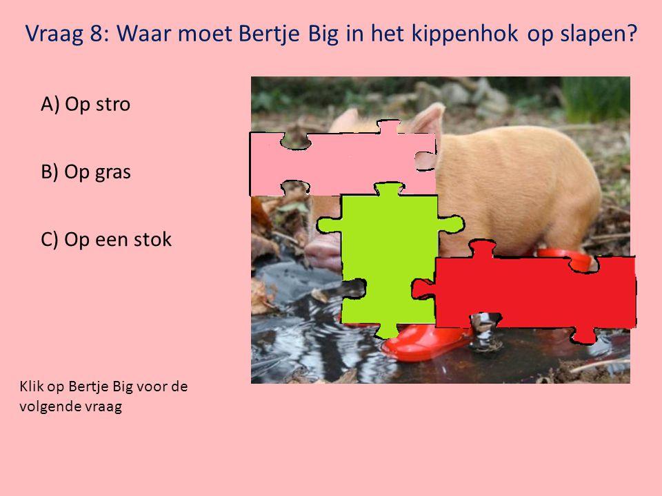 Vraag 8: Waar moet Bertje Big in het kippenhok op slapen