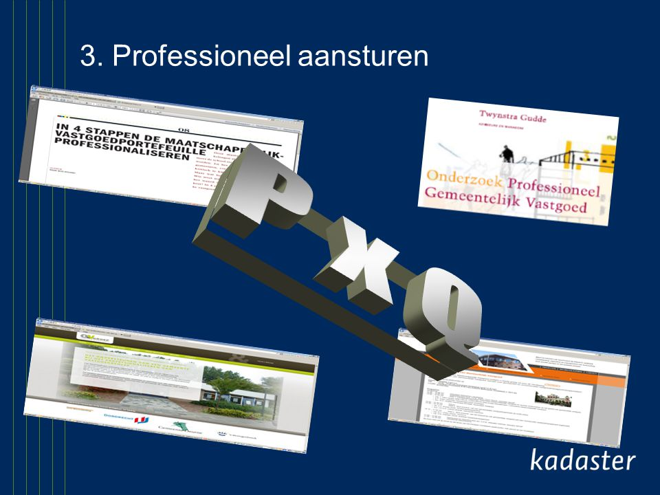 3. Professioneel aansturen