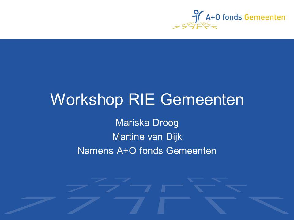 Workshop RIE Gemeenten