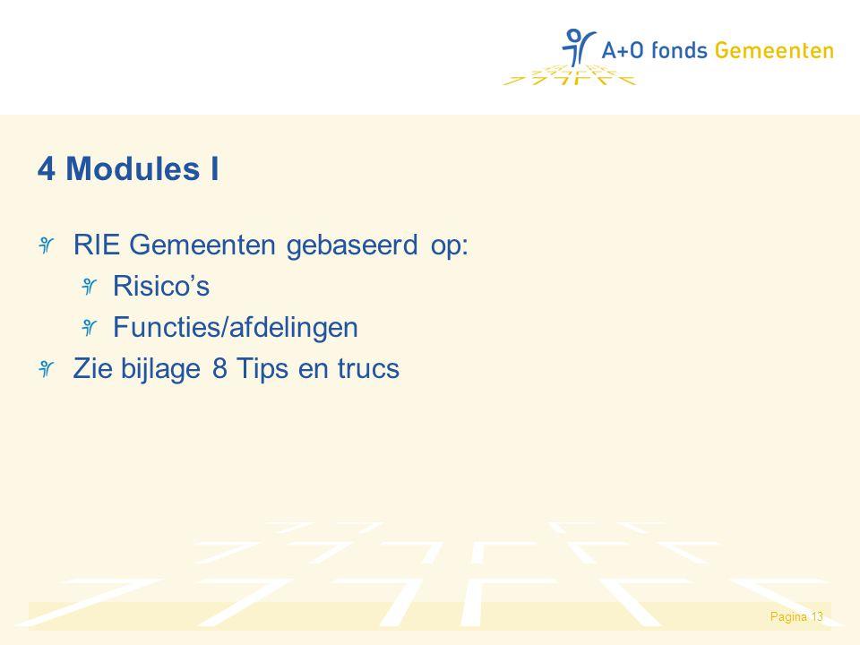 4 Modules I RIE Gemeenten gebaseerd op: Risico's Functies/afdelingen