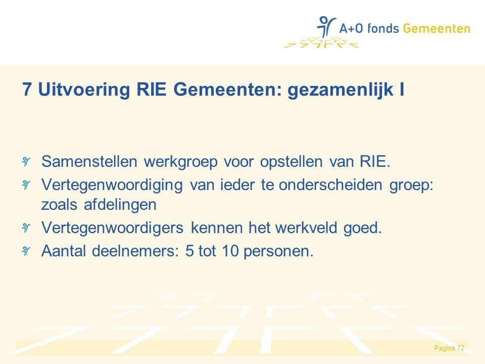 7 Uitvoering RIE Gemeenten: gezamenlijk I