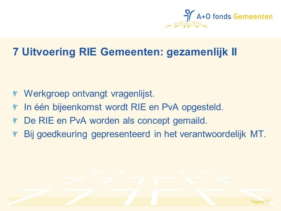 7 Uitvoering RIE Gemeenten: gezamenlijk II