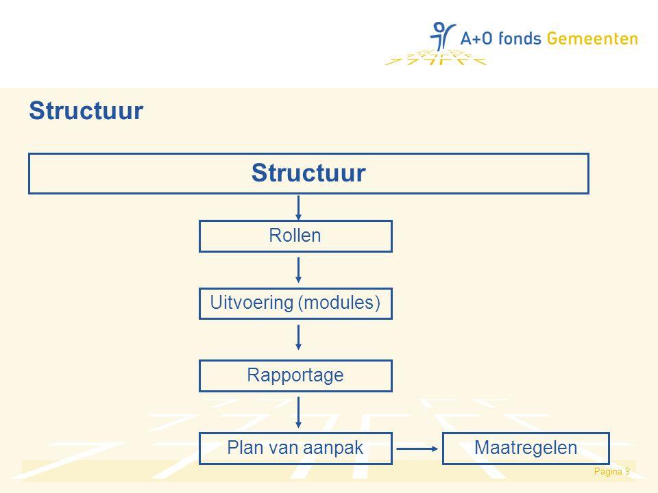Structuur Structuur Rollen Uitvoering (modules) Rapportage