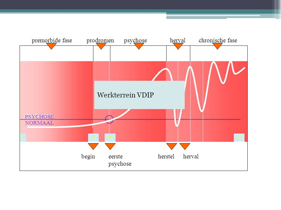 Werkterrein VDIP prodromen chronische fase herval psychose