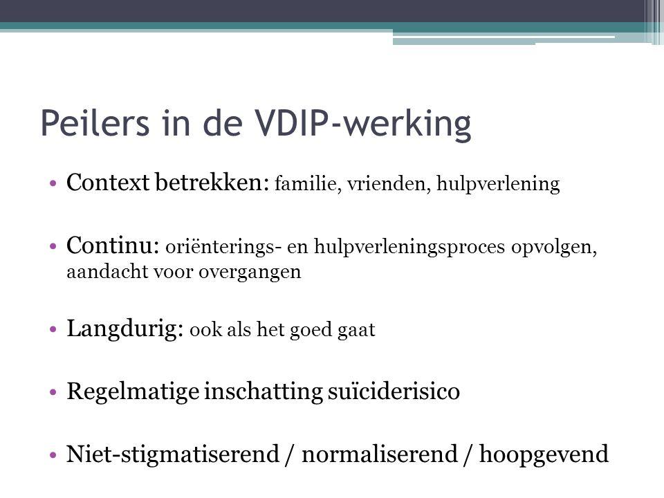 Peilers in de VDIP-werking