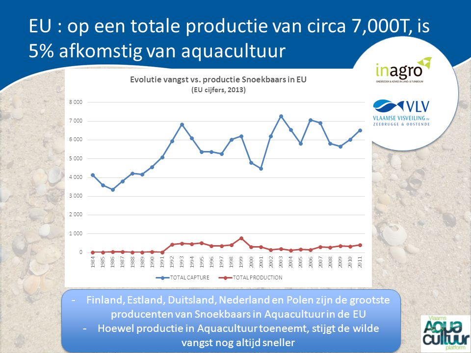 EU : op een totale productie van circa 7,000T, is 5% afkomstig van aquacultuur