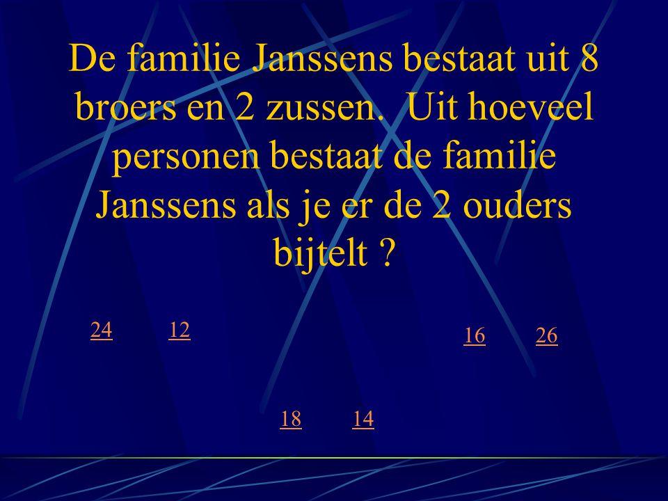 De familie Janssens bestaat uit 8 broers en 2 zussen
