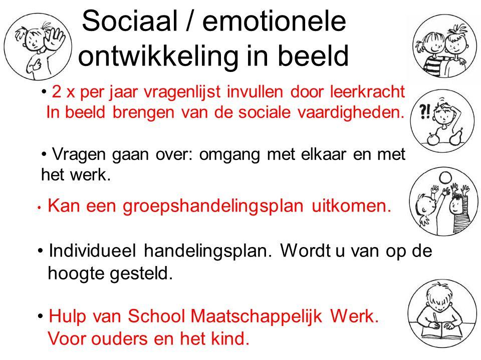 Sociaal / emotionele ontwikkeling in beeld