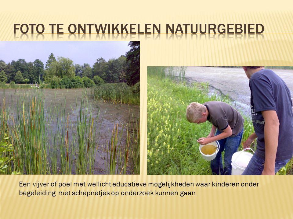 Foto te ontwikkelen natuurgebied