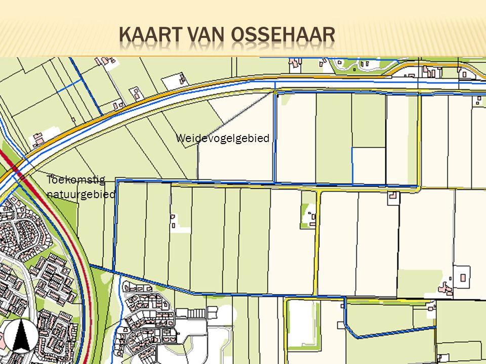 Kaart van OSSEHAAR Weidevogelgebied Toekomstig natuurgebied