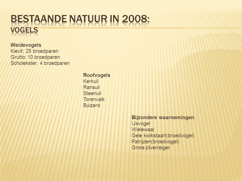 Bestaande natuur in 2008: VOGELS