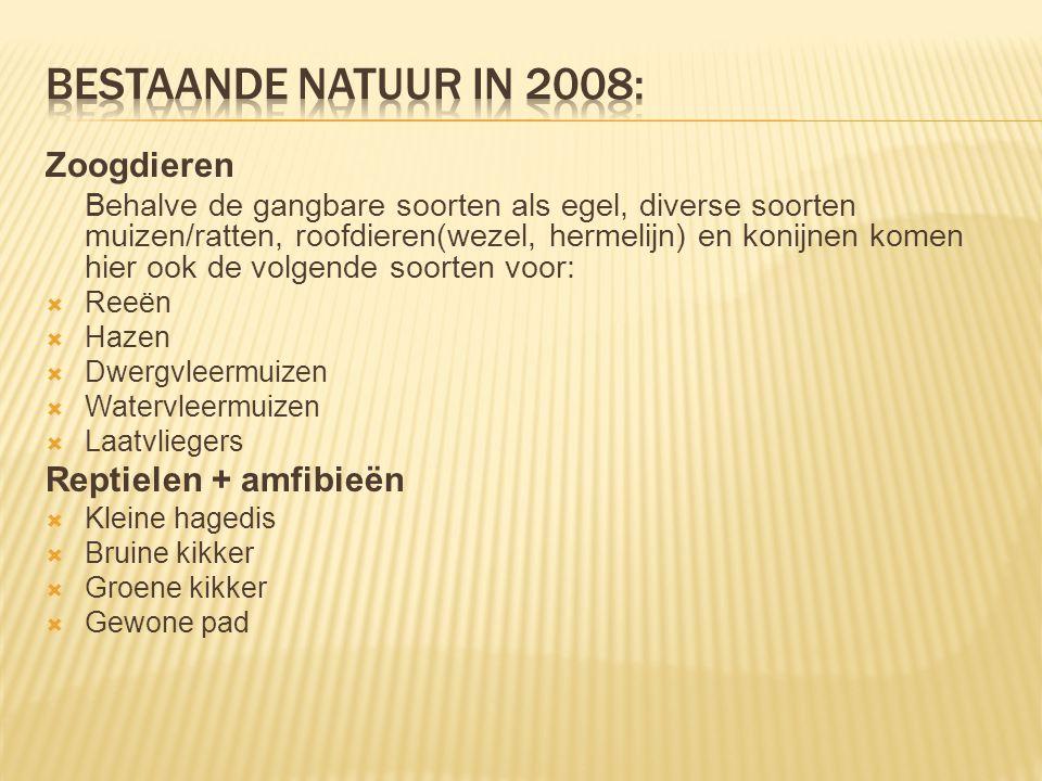 Bestaande natuur in 2008: Zoogdieren Reptielen + amfibieën