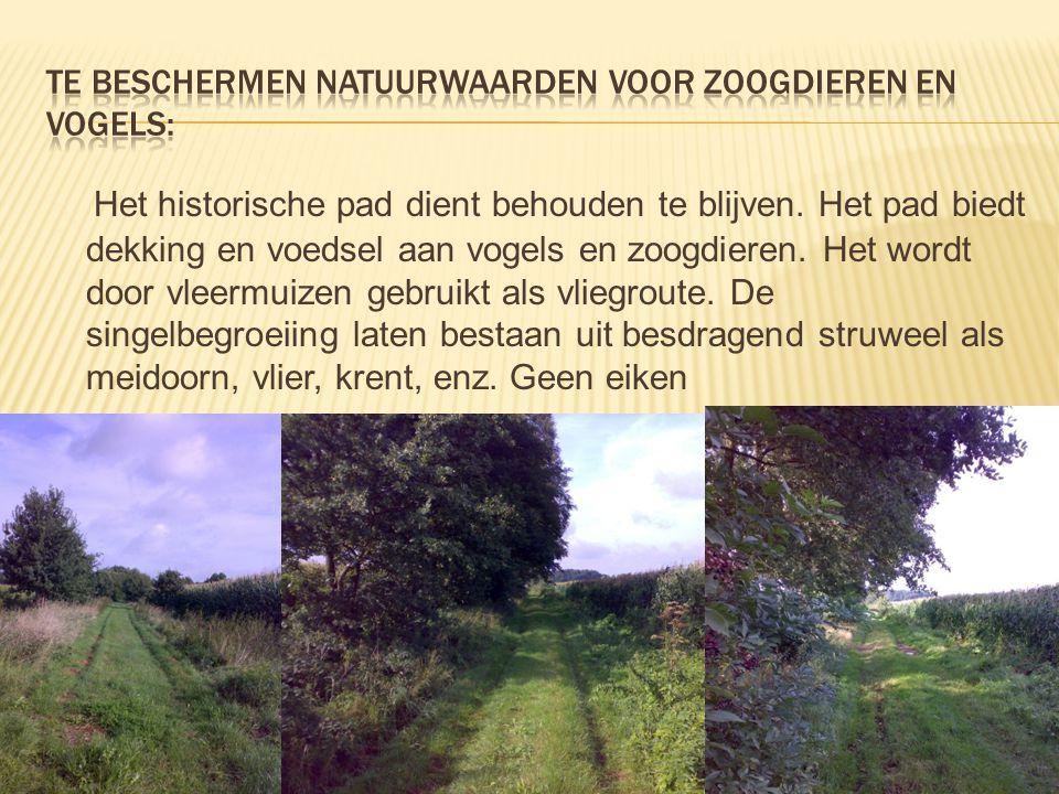 Te beschermen natuurwaarden voor zoogdieren en vogels: