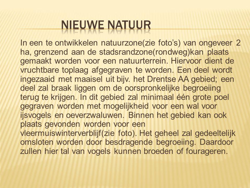 Nieuwe natuur