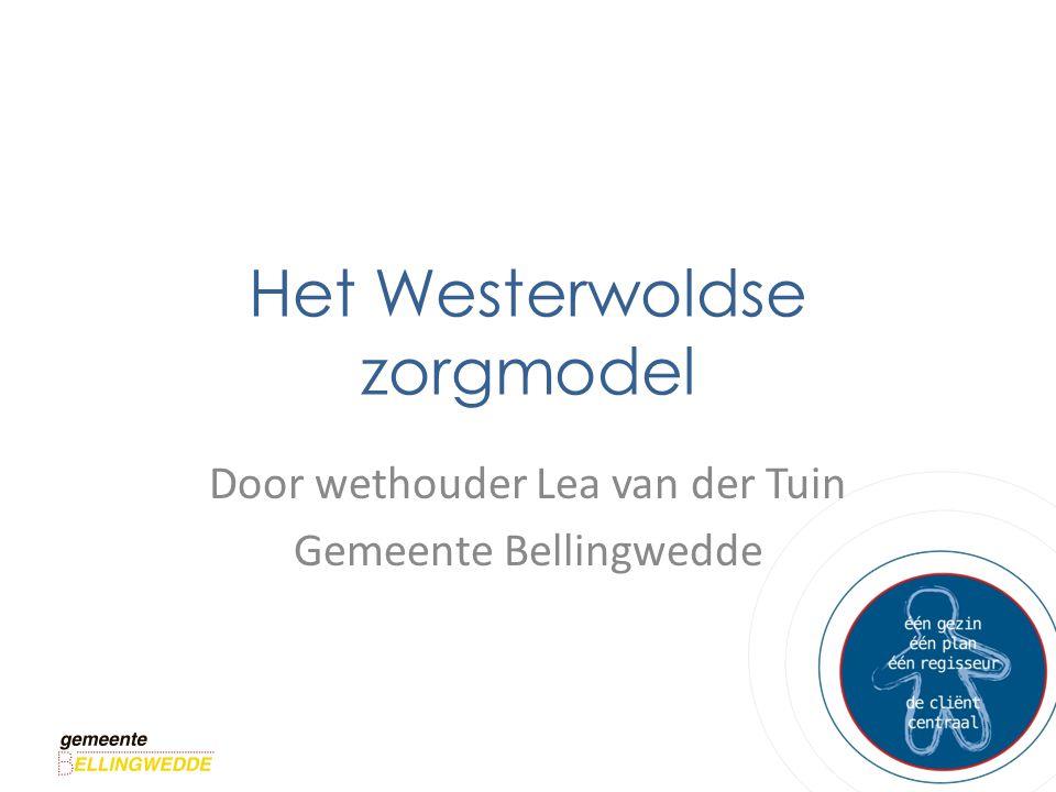 Het Westerwoldse zorgmodel