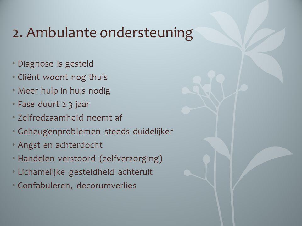 2. Ambulante ondersteuning